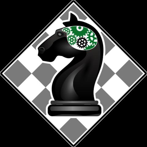Организация шахматных мероприятий