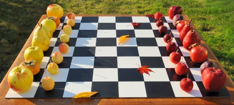 """Шахматный лагерь """"Осенние каникулы"""""""